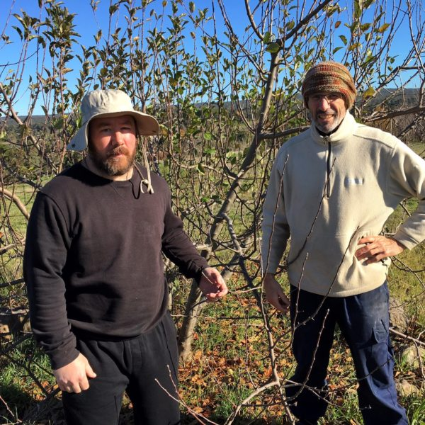 Jon from Taradale and Glenn from Golden City Support Services enjoy tending to old fruit trees